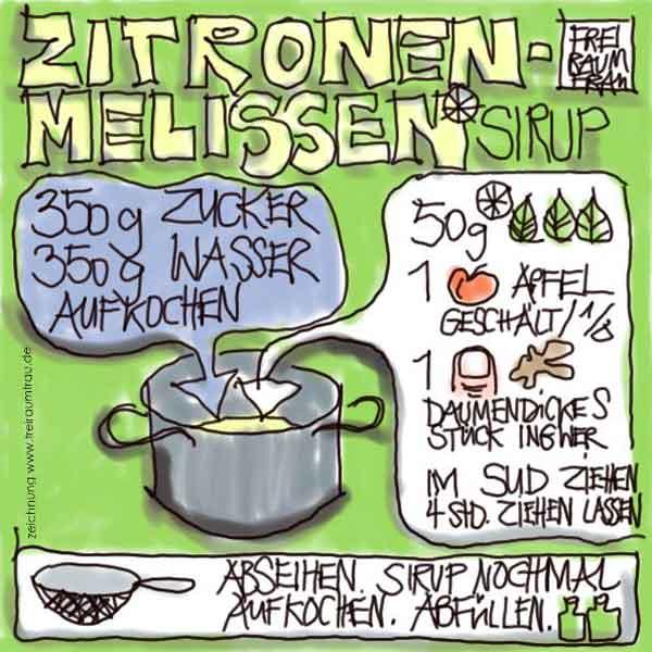 Zeichnung Zitronenmelissen-Sirup